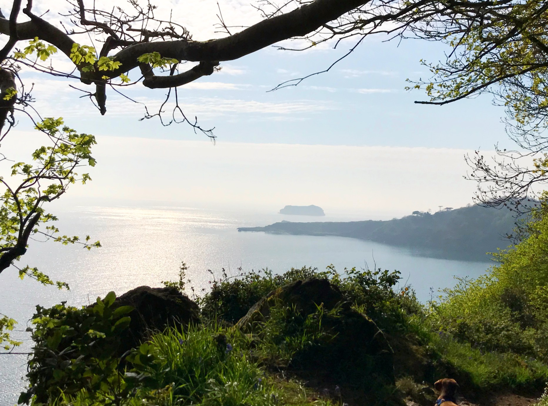 Ten Reasons to have a break away in Torquay in the era of Covid 19